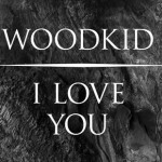 "Brodinski remixe ""I Love You"" de Woodkid"