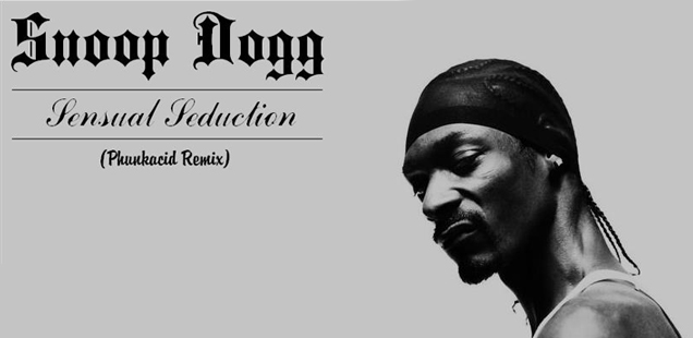 Phunkacid, remix le titre Sensual Seduction de Snoop Dogg