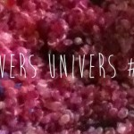 Divers Univers #7